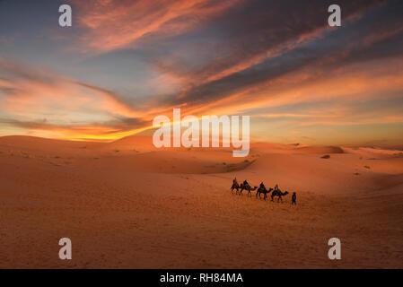 Amazing sunset over the dunes Erg Chebbi in the Sahara desert near Merzouga, Morocco. Camel caravan of people. sand dunes landscape with stunning sky - Stock Photo