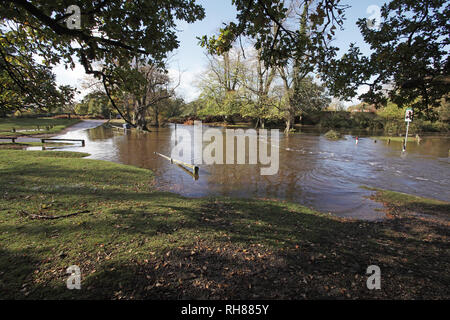 The Dockens Water in flood Moyles Court New Forest National Park Hampshire England UK - Stock Photo