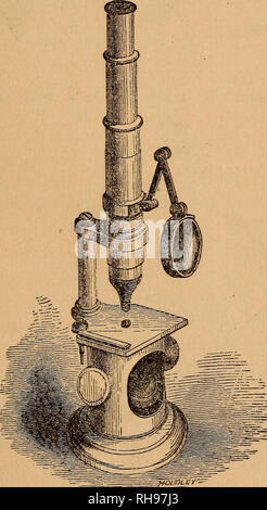 . The botanist's companion; or, Directions for the use of the microscope. Botany; Microscopy. COMPOUND MICROSCOPE. y lens for illuminating opaque objects may be fitted into the hole at the corner of the stage ; it is so arranged that it can be used in any required position or angle. Among the objects often furnished with the microscope is a plate of selenite, which, if laid under many animal and vegetable structures while being examined by polarized light, will cause them to assume beautiful colours. Nachet has invented a binocular microscope by which the objects are seen in relief. Very good  - Stock Photo