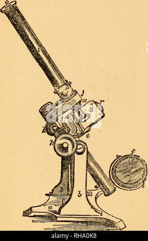 . The botanist's companion; or, Directions for the use of the microscope. Botany; Microscopy. 8 COMPOUND MICROSCOPE. any inclination, horizontal, vertical, or intermediate. The stage, d^ 6, is firmly attached to the axis, as is also the double mirror, /. The triangular bar, ^, has a rack on its posterior part, which is worked by a pinion, the milled heads of which are seen at ^, h. The body, z, screws firmly into the arm,^; the achromatic object-glasses are screwed into the body at m ; the Huyghenian eye-piece slides into the other end of the body. The mirror is plane on one side, and concave  - Stock Photo