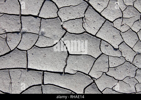 Dry cracked mud in dried out pond / stream caused by prolonged drought due to extreme summer temperatures - Stock Photo