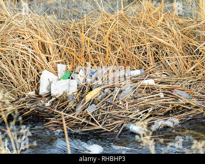Plastic pollution along a stream in a nature study area. - Stock Photo