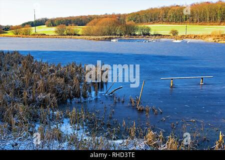 Taken to capture Sprotbrough Flash, completely frozen over in February, 2019. - Stock Photo