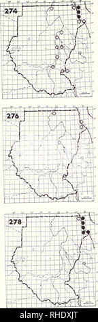 . Bonner zoologische Monographien. Zoology. 98. (Roseate Tern 352) no map Sterna dougallii dougallii There are no definite records for Sudan even though it is recorded from Egypt and Ethiopia. 275 Sooty Tern (358) no map Sterna fuscata (fuscata) AM? NBR rare, vagrant httoral habitats Remarks: One record from Mohamed Qol 20/37 in August 1982 (Nikolaus 1984 a) 276 Common Tern (351) Sterna hirundo PM (8-10, 4-5) A S uncommon; rare inland littoral habitats, large rivers 277 Arctic Tern no map Sterna paradisaea PM (5) S vagrant? littoral habitats, large rivers Remarks: An adult bird was ringed at K - Stock Photo