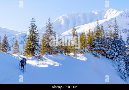 Winter mountain trekking. The man hikes on footpath in the snow. Trees in sunlight. High ridge with steep slopes. Clear blue sky. Ukraine. Carpathians - Stock Photo