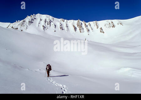 Winter trekking in high snowy mountains. A tourist walks to a rocky slope, and leaves traces on the snow. Sunny weather. Ukraine. Carpathians - Stock Photo