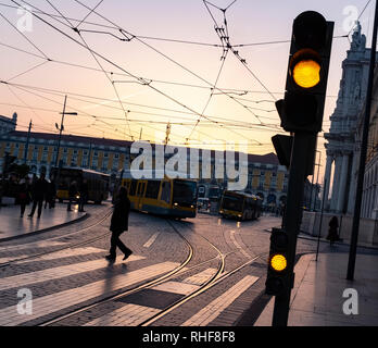 Traffic Lights Amber Bus Signal tram lines zebra crossing street scene - Stock Photo
