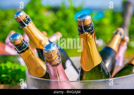 Bottles of champagne, sparkling wine in cooler at wedding reception outdoors, wedding and summer party concept - Stock Photo