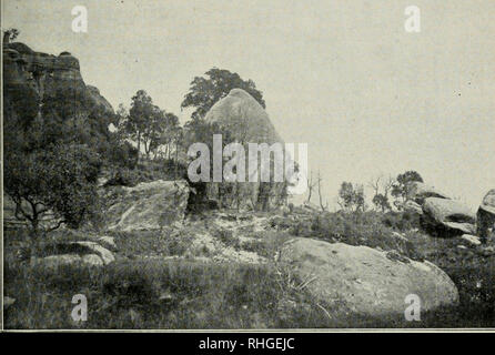 . Boletn de la Real Sociedad Espaola de Historia Natural. Real Sociedad Espaola de Historia Natural; Natural history; Natural history -- Spain. Bol. de la R. Soc. Esp. de Hist. Nat. Tomo XV.-LÁM. XIII.. FiG. 1/'—La piedra del sacrificio, vista por el lado Sur. Sabassona (Vich).. Please note that these images are extracted from scanned page images that may have been digitally enhanced for readability - coloration and appearance of these illustrations may not perfectly resemble the original work.. Real Sociedad Espaola de Historia Natural; Museo Nacional de Ciencias Naturales (Spain). Madrid : E - Stock Photo
