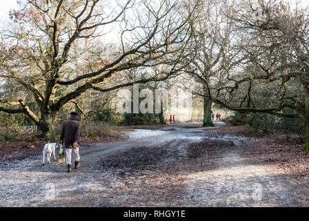 A man walks his dog down a frosty path on a cold but sunny winters day on Hampstead Heath, London, UK. - Stock Photo