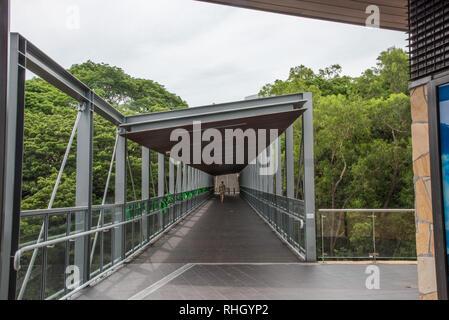 Darwin, Northern Territory, Australia-October 22,2017: Waterfront footbridge with tourist and lush tree tops in Darwin, Australia - Stock Photo