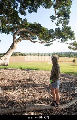 Young boy in a hooded jacket, under a large fig tree branch, Wollongbar, New South Wales, Australia - Stock Photo