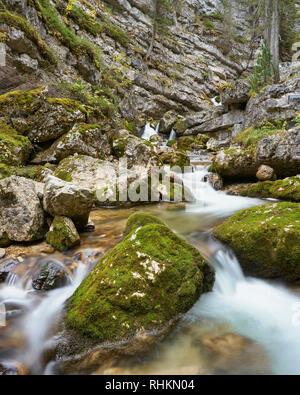 Torrente Boite, near Cortina d'Ampezzo, Dolomites, Veneto, Italy - Stock Photo