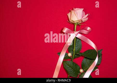A single pink rose with a pink ribbon and pearls on a dark pink background with space for text. - Stock Photo