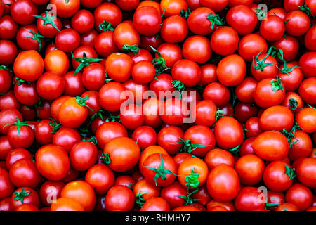 The row of organic red cherry tomatoes beautiful background