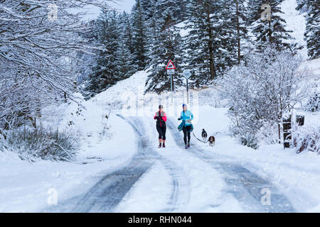 Two women running along snow covered road with dogs at Glencoe, Highlands, Scotland in winter - Stock Photo