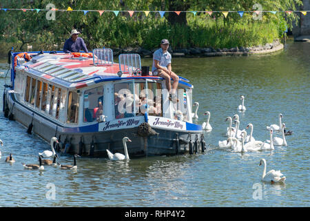 Stratford upon Avon Warwickshire England 30th June 2018 Jennifer May trip boat surrounded by swans at the River festival - Stock Photo