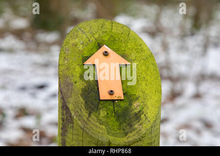 Signs mounted on a moss-covered wooden post indicating footpath for walkers Arrowe Park Birkenhead February 2019 - Stock Photo