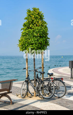 LAZISE, LAKE GARDA, ITALY - SEPTEMBER 2018: Two bikes left up against a tree on the promenade in Lazise on Lake Garda. - Stock Photo