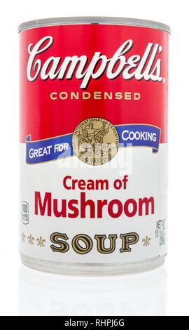 Winneconne, WI - 2 Feb 2019: A can of Campbells soup in cream of mushroom on an isolated background - Stock Photo