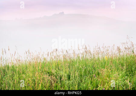Misty Summer Sunrise in the Mountains: Tall Grass, Thick Fog over a Mountain, Trees and Dramatic Purple Clouds in Background. New Day, Traveling, Blue - Stock Photo