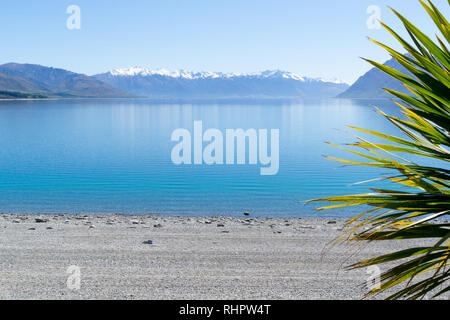 Lake Hawea expansive view from shore tp snow capped mountains in distance with cabbage tree leaves framing on side of image - Stock Photo