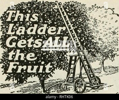 """. Better fruit. Fruit-culture. Page 38 BETTER FRUIT March. ^£S' Here is a ladder that gets all the fruit on all the branches. Never injures twigs or next year's fruit buds, because it never rests against them. Mounted on a hght, strong, easily portable steel truck. One man moves it easily. Holds a weight of 600 lbs. Can""""t tilt or tip. Makes fruit picking absolutely safe. The Safety Ladder pays for itself by saving fruit that would otherwise be lost, by making picking easier and faster and by obviating all personal danger or liability therefor. Just as con- venient for pruning and spraying - Stock Photo"""