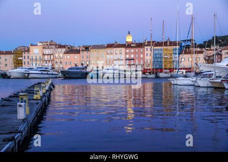 Saint Tropez, France Cote d Azur January, 2019. (Port de Saint Tropez, Mimosa, Cormorant, Nature, Rue de la Citadelle, Yachts - Stock Photo