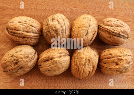 A Group of Whole Walnuts - Stock Photo