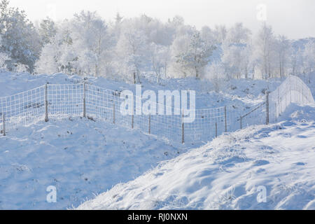 Bitterly cold morning with freezing fog and hoar frost turning the scene into a winter wonderland on Rannoch Moor, Highlands, Scotland in Winter - Stock Photo