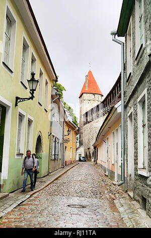 TALLINN, ESTONIA - AUGUST 30, 2018: Muurivahe Street and Tower behind Monks in Old town - Stock Photo