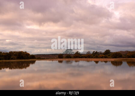 Stormy clouds over lake in New Forest countryside