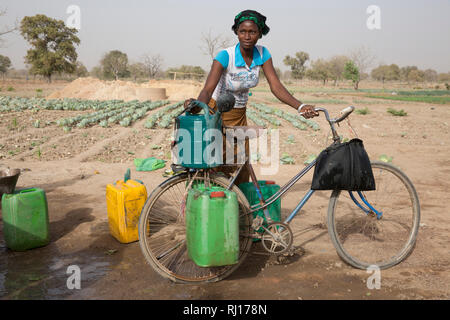 La-toden village, Yako Province, Burkina Faso. Abzeta Sourgou, 24, mother of 2, working on her market garden.   She uses a bike to carry water from the one well that still has water to her plot. - Stock Photo