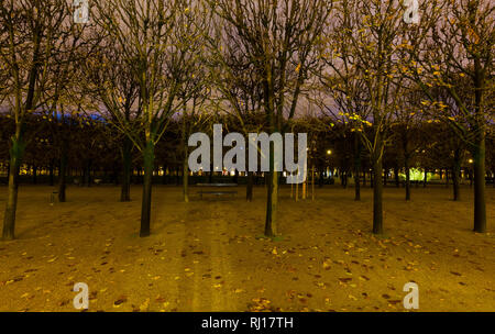 Paris (France) - Jardin du Palais Royal at night - Stock Photo
