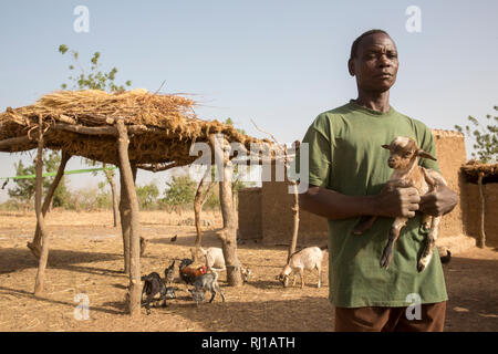 Kourono village, Yako province, Burkina Faso; Moussa Mande, 54, goat project beneficiary, with goat droppings he will use to fertilize his crop fields. - Stock Photo