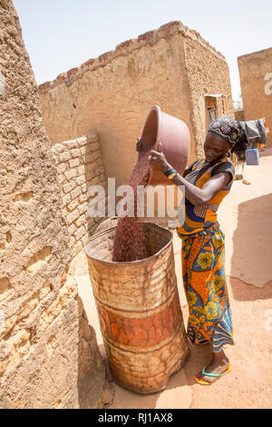 Kourono village,Yako province, Burkina Faso.  Mariam Tougma, 23, pouring sorghum she has just winnowed into an old oil drum to store for safe-keeping in her family compound. - Stock Photo