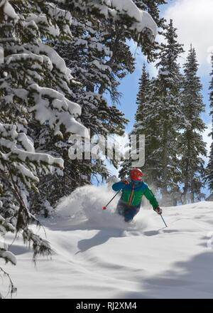 Spring powder snow in the Canadian Rockies - Stock Photo