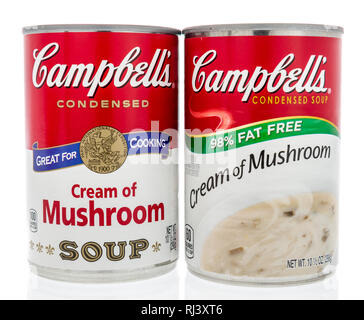 Winneconne, WI - 2 Feb 2019: A pair of can of Campbells soup in cream of mushroom of original and fat free on an isolated background - Stock Photo