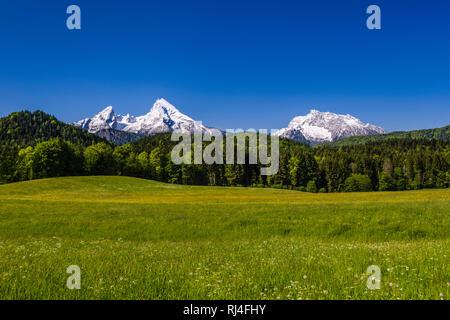 Deutschland, Bayern, Oberbayern, Berchtesgadener Land, Bischofswiesen, Blick auf Watzmann und Hochkalter - Stock Photo