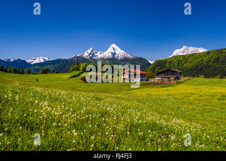 Deutschland, Bayern, Oberbayern, Berchtesgadener Land, Bischofswiesen, Blick auf Steinernes Meer, Watzmann und Hochkalter - Stock Photo