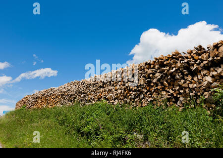 Aufgestapeltes Brennholz