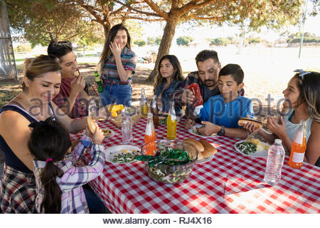 Latinx family enjoying barbecue lunch in park - Stock Photo