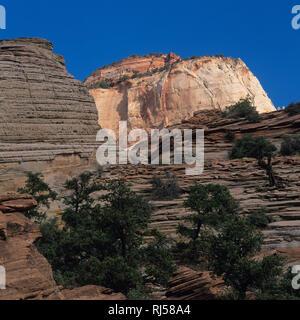Canyon Overlook Trail, Zion Nationalpark - Stock Photo