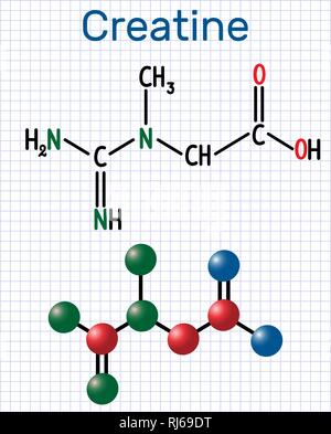 Creatine molecule. Structural chemical formula and molecule model. Sheet of paper in a cage. Vector illustration - Stock Photo