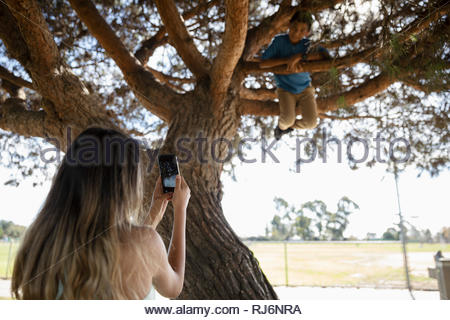 Girl with camera phone photographing brother climbing park tree - Stock Photo