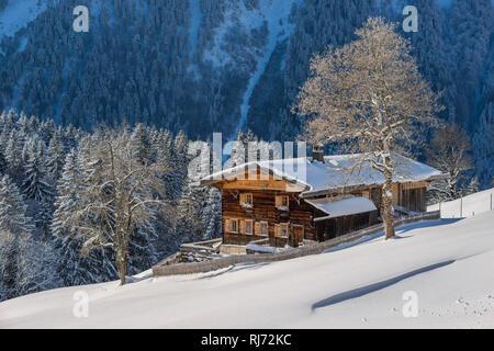 Bauernhof, Gerstruben, ein ehemaliges Bergbauerndorf im Dietersbachtal bei Oberstdorf, Allgäuer Alpen, Allgäu, Bayern, Deutschland, Europa - Stock Photo