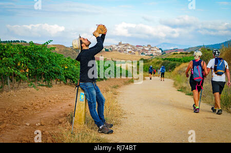 Pilgrim drinking from a bota, wineskin, Camino de Santiago or Way of Saint James. Mañeru. Navarre. Spain - Stock Photo