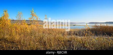 Deutschland, Sachsen-Anhalt, Mücheln, Geiseltalsee, größter künstlicher See Deutschlands, Birken in voller Herbstfärbung - Stock Photo