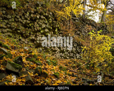 Deutschland, Bayern, Naturpark Bayrische Rhön, UNESCO-Biosphärenreservat, Basaltprismenwand am Gangolfsberg, Naturschutzgebiet Lange Rhön