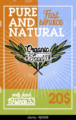Color vintage organic food banner. Vector illustration, EPS 10 - Stock Photo